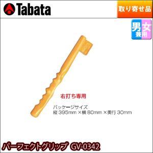 タバタ TABATA ゴルフスウィング練習器具 正しいグリップを習得 パーフェクトグリップ 右打ち専用 GV-0342|golf7