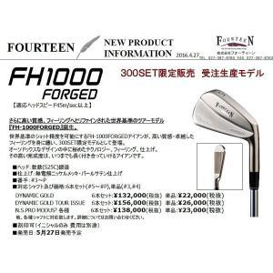 2016年 限定300セット フォーティーン FH1000 FORGED アイアン N.S.PRO MODUS3 シリーズ 各種|golfersinn