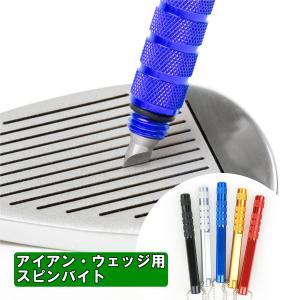 ゴルフ クラブ メンテナンス用品 アイアン ウェッジ用 スピンバイト(全5色) 溝切ツール 掃除具 ...