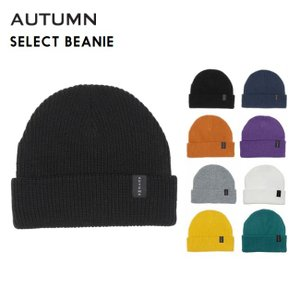 ビーニー  AUTUMN オータム SELECT BEANIE 21-22 ニット帽 SNOWBOARD スノーボード SKATE SK8|golgoda