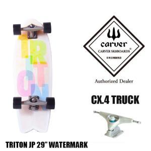 CARVER カーバ TRITON Tube 29 サーフスケート スケートボード スケボー スケート コンプリート 完成品|golgoda
