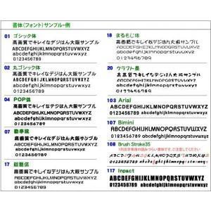 高精細スタンプ デジはん・最大名刺サイズ・LLtype(文字+画像)41x76mm 補充インク付 golhan 04