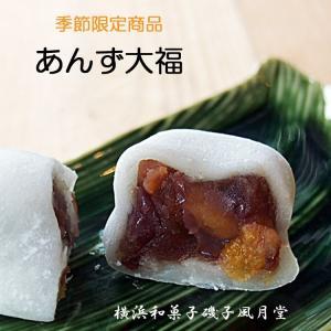 あんず大福 だいふく 国産米 国産小豆  アンズ つぶあん入り 6個入  冷凍便配送 熨斗 名入れ可|gomadaremochi