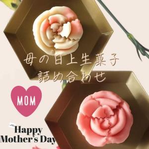 母の日 ギフト スーツ カーネーション 上生菓子詰め合せ8個入 ご贈答用化粧箱入|gomadaremochi