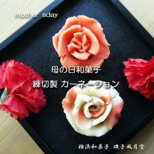 母の日 カーネーション 練りきり 和菓子 上生菓子詰め合せ2個入り|gomadaremochi