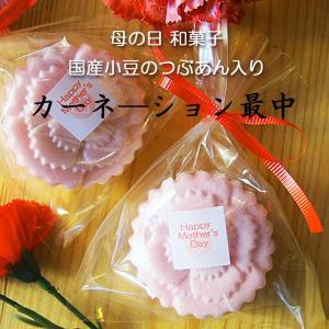 母の日ギフト 和菓子 カーネーションのお菓子 カーネーション最中1個 母の日ギフトラッピング|gomadaremochi