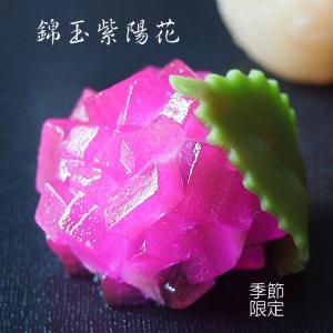 上生菓子 紫陽花 あじさい  錦玉羹製 1個 個包装*6月5日以降配送|gomadaremochi
