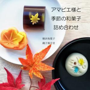 敬老の日 和菓子 アマビエ様 と 秋の和菓子詰め合わせ 上生菓子 8個入り ご贈答用化粧箱入|gomadaremochi