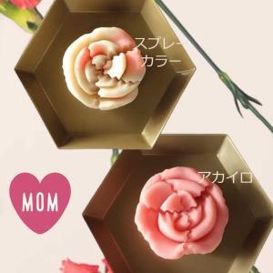 母の日 花 カーネーション 練り切り製 母の日限定上生菓子 個包装1個|gomadaremochi
