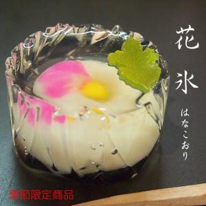 錦玉  練り切り 水中花 上生菓子 花氷 はなこおり 個包装 1個 *12個以上でご注文可|gomadaremochi