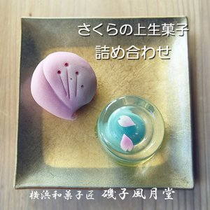 さくら 和菓子 桜 アマビエ 春の上生菓子 詰め合わせ ご自宅用箱6個入  徳用 ギフト対応不可 gomadaremochi