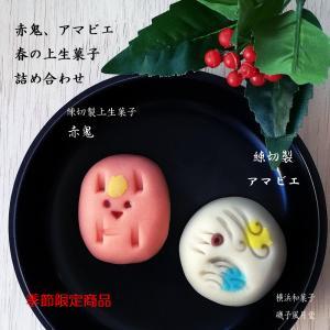 節分の上生菓子 赤鬼 春の上生菓子詰め合わせ8個入 ご贈答用化粧箱入 ギフト のし|gomadaremochi