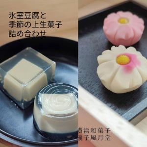 氷室豆腐 上生菓子 とうふ入り 錦玉羹 上生菓子詰め合わせ 8個入り 敬老の日 ギフト指定可 化粧箱入り|gomadaremochi