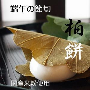 柏餅 かしわもち こしあん 個包装 1個 国産米 国産小豆使用 冷凍便配送*5個以上でご注文可 gomadaremochi