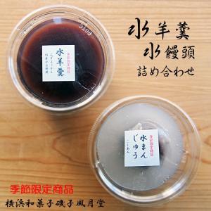 水まんじゅう 水ようかん 和菓子 個包装 こしあん 2個入り ナイロンパック入り|gomadaremochi