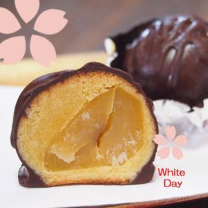 ホワイトデー お返し プチギフト 栗のチョコ饅頭 まるごと栗のチョコボール ギフトーラッピング・1個|gomadaremochi