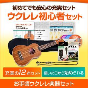 【ウクレレ楽器セット】ウクレレ初心者セット DVD&テキスト1〜3弾+楽器セット
