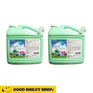 消臭 除菌 o-157 食中毒 安定化二酸化塩素製剤 セントフレッシュ 4L×2本+500ml 空ボトル4本+替え用ノズル2本サービス|good-smiley