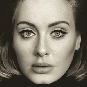 Adele / 25 (180 gram Vinyl)【輸入...