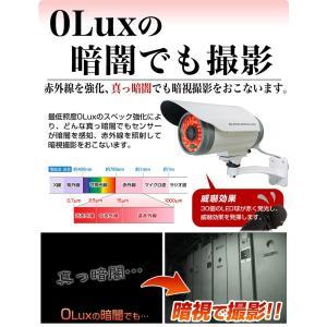防犯カメラ SDカード 録画 監視カメラ 有線 屋外 防水|goodeyes|16