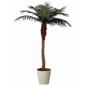 インテリアグリーン 造花 光触媒 人工植物 観葉植物 鉢植え /フェニックス210cm|goodfellow