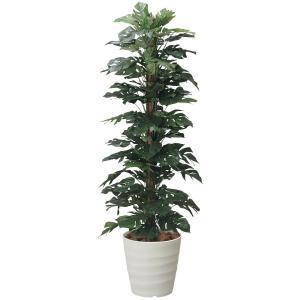 スプリットフィロ 180cm /造花の観葉植物 光触媒(空気浄化) インテリア・グリーン鉢植え /143A350-3517|goodfellow