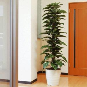 ジャイアントポトス 180cm /造花の観葉植物 光触媒(空気浄化) インテリア・グリーン鉢植え /145A350-3517|goodfellow