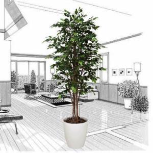 ロイヤル・ベンジャミン 160cm /造花の観葉植物 光触媒(空気浄化) インテリア・グリーン鉢植え /151C580-2817|goodfellow