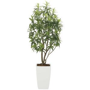 造花 観葉植物 「フレッシュ・ドラセナW 180cm」 光触媒 空気清浄 インテリア グリーン 26|goodfellow