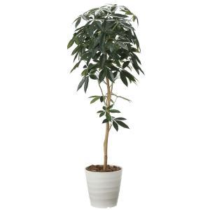 造花 観葉植物 「パキラ-DZ 160cm」 光触媒 空気清浄 インテリア グリーン 30|goodfellow