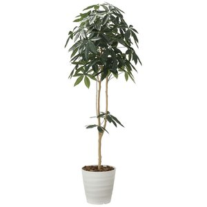 造花 観葉植物 「パキラ-DZ 180cm」 光触媒 空気清浄 インテリア グリーン 30|goodfellow