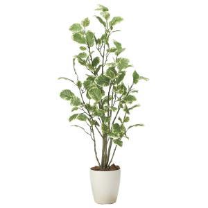 造花 観葉植物 「ポリシャス 115cm」 光触媒 空気清浄 インテリア グリーン 49|goodfellow