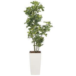 造花 観葉植物 「シェフレラ 130cm」 光触媒 空気清浄 インテリア グリーン 49|goodfellow