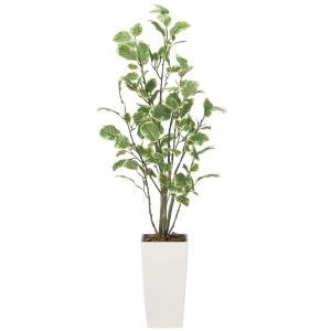 造花 観葉植物 「ポリシャス 130cm」 光触媒 空気清浄 インテリア グリーン 49|goodfellow