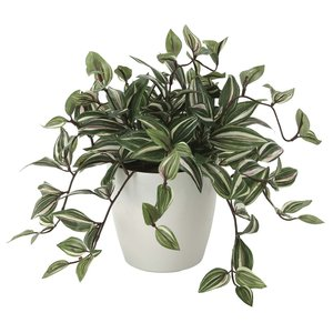 造花 観葉植物 「トラディスカンディア 32cm」 光触媒 空気清浄 インテリアグリーン 60|goodfellow
