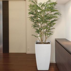 観葉植物 造花 光触媒 人工植物 グリーン /EX.アート・ゴールデンツリー180cm 114A85007|goodfellow