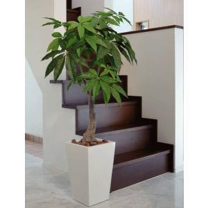 観葉植物 造花 光触媒 人工植物 グリーン /EX.ロイヤルパキラ135cm 129A38014|goodfellow