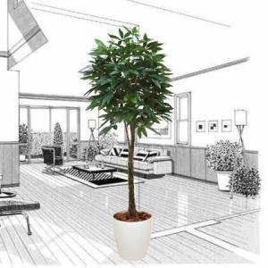 造花 光触媒 人工植物 観葉植物 鉢植え インテリアグリーン /パキラ160cm 編込み 139B47026|goodfellow