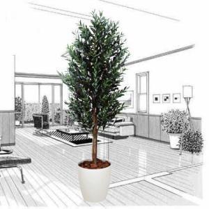 造花 観葉植物 光触媒 インテリアグリーン 鉢植え /オリーブ160cm 148A50025|goodfellow