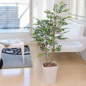 光触媒 観葉植物 鉢植え インテリアグリーン 造花 /トネリコ120cm 184B20030|goodfellow