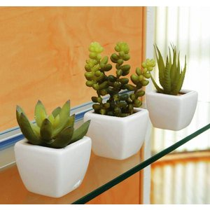 光触媒 観葉植物 造花 人工植物 グリーン・ポット /カクタス3点セット 231B3540|goodfellow