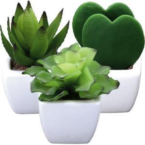光触媒 観葉植物 造花 人工植物 グリーン・ポット /プチハート カクタス3点セット 235B3540|goodfellow