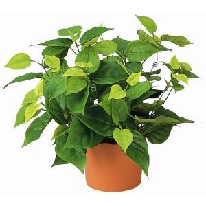 造花 観葉植物 光触媒 人工植物 グリーン /ライムポトス 247B5036|goodfellow