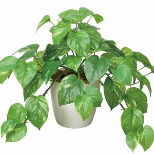 造花 観葉植物 光触媒 人工植物 ポット・グリーン  /フレッシュ・ポトス|goodfellow