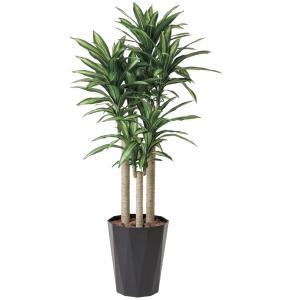 幸福の木 180cm /造花の観葉植物 光触媒(空気浄化) インテリア・グリーン鉢植え /401A380-2917|goodfellow