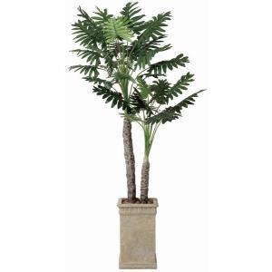 観葉植物 造花 光触媒 人工植物 グリーン /EX.セロームW 200cm|goodfellow