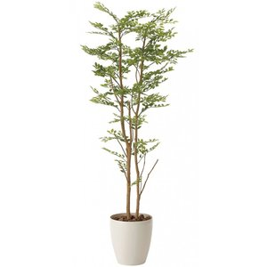 造花・観葉植物 光触媒(空気浄化) インテリア・グリーン鉢植え /ゴールデンリーフ160cm 605A31026-16|goodfellow