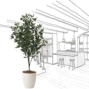 造花・観葉植物 光触媒(空気浄化) インテリア・グリーン鉢植え /オリーブ110cm 617A18038-16|goodfellow