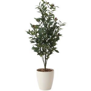 造花・観葉植物 光触媒(空気浄化) インテリア・グリーン鉢植え /オリーブ130cm 618A25038-16|goodfellow