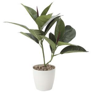 造花 観葉植物 「ゴムの木 47cm」 光触媒 空気清浄 インテリアグリーン 64|goodfellow